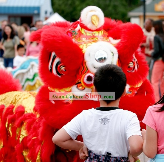 Lucky Red Competition and Parade HOK SAN Lion Dance Costumes Complete Set