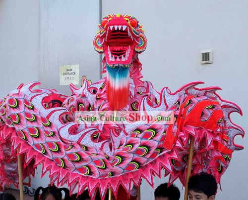 Chinois traditionnel lumineux Phoenix Dragon Dance Costumes Ensemble complet