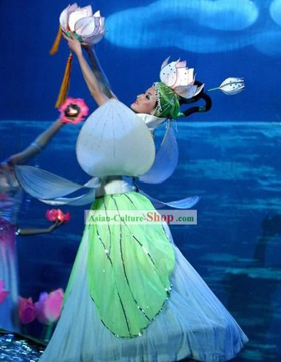 Chinese Traditional Lotus Dance Costume Complete Set