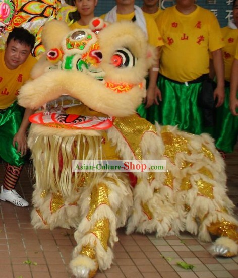 Chinese Classic Net Dragon Dance Equipments Complete Set (yellow)
