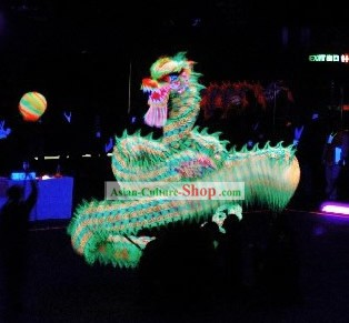 Professional Luminous Costumes Parade dragon Complete Set