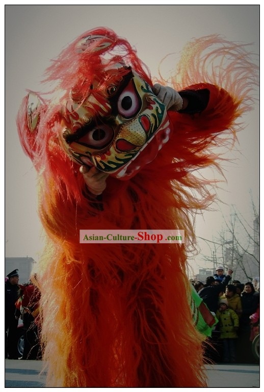 Single Person Northern Lion Dance Costumes Whole Set