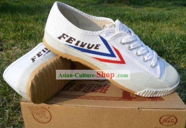 Chinese Professional Arts martiaux Tai Chi Chaussures Fei Yue Marque