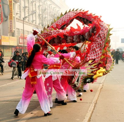 Chinese Classical Dragon Dance Costume for Women