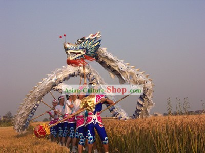 Guide DVD of Playing Dragon Dance
