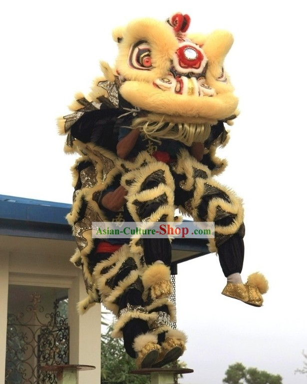 Competition and Display HOKSAN Lion Dance Costumes Complete Set