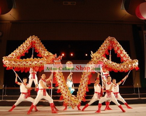 Handmade Lightweight Competition Dragon Dance Costumes Complete Set