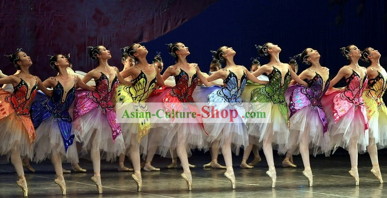 Chinese Butterfly Ballet Costume Set
