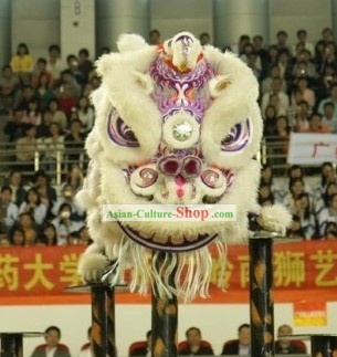 Top Competition and Parade Luminous Lion Dance Costume Complete Set