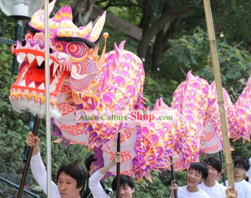 Luminous Dragon Dance Costumes Complete Set for 30 People