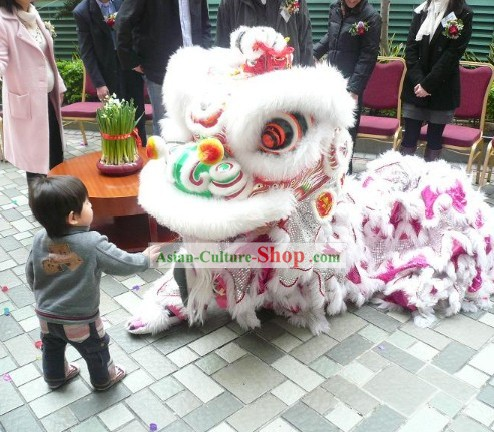 Top Handmade China Lion Dance Costume Complete Set