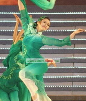 Traditional Chinese Green Willow Dance Costumes and Hair Accessories for Women