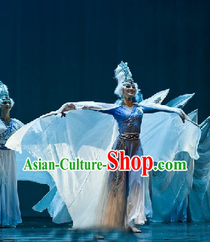 Swan Dance Costumes and Headdress Complete Set for Women