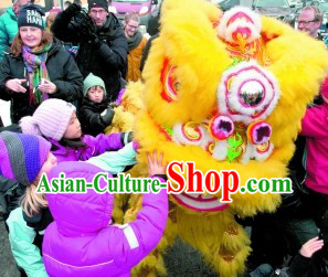 Yellow Happy New Year Supreme Quality Lion Dance Costume Complete Set
