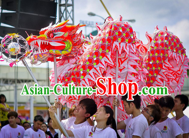 Professional Luminous Dragon Dance Equipment Complete Set for 9-10 Adults
