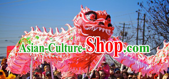Phoenix Pattern Chinese Lunar New Year Dragon Dance Performance Costume Complete Set