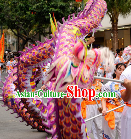 Purple CNY Dragon Dance Costume for 9-10 Persons