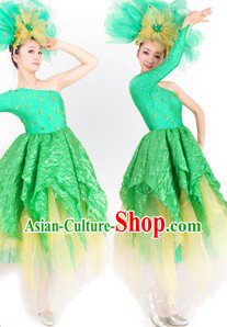 Traditional Chinese Opening Dance Costumes and Headdress for Women