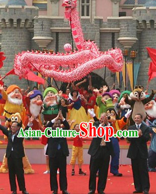 Chinese Lunar New Year Parade Supreme Luminated Dragon Dance Costume Complete Set