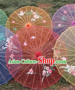 Traditional Chinese Transparent Umbrella