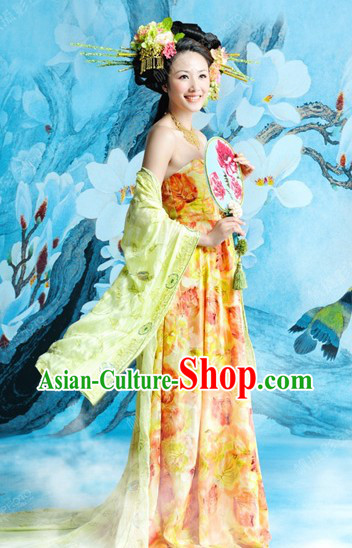 Traditional Chinese Tang Dynasty Lady Dress for Women