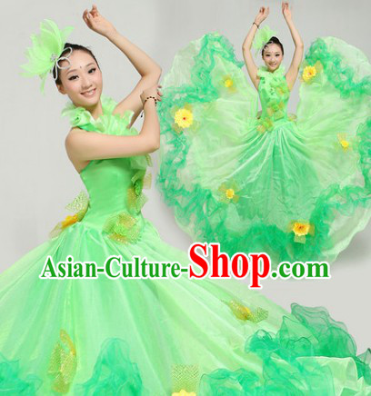 Top Green Flower Dance Costumes and Hairdress