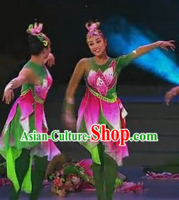 Chinese Stage Performance Professional Flower Dance Costumes Complete Set
