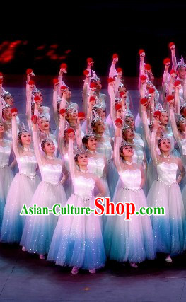 Swan Stage Performance Dance Costumes and Headwear Complete Set