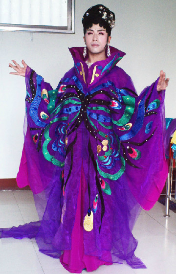 Li Yugang Top Stage Performance Butterfly Costumes Complete Set