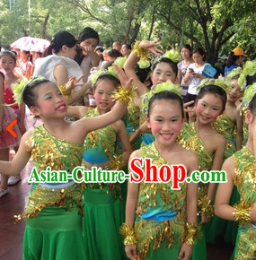 Traditional Chinese Peacock Dance Costumes and Headdress for Adults or Children
