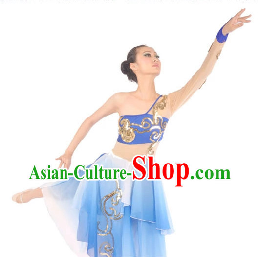 Chinese Ballerina Costume Contemporary Costumes