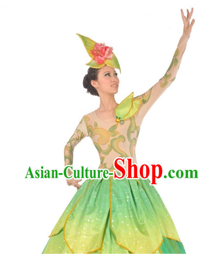China Dance Costumes Ballerina Costume Burlesque Costumes Salsa Costumes,