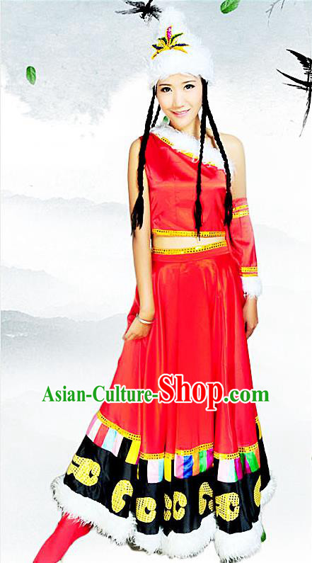 Traditional Chinese Zang Nationality Dancing Costume, Tibetan Female Folk Dance Ethnic Pleated Skirt, Chinese Minority Tibetan Nationality Embroidery Costume for Women
