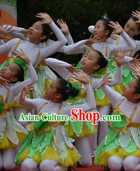 Chinese Traditional Festival Dance Dress Dancewear Costumes Dancer Costumes Dance Costumes Chinese Dance Clothes Traditional Chinese Clothes Complete Set for Kids