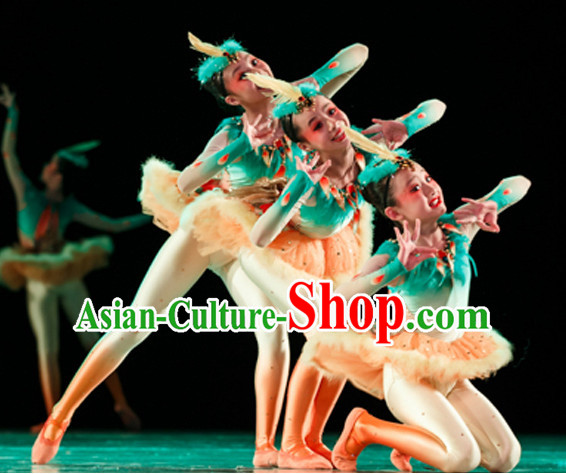 Chinese Traditional Bird Dance Costumes and Headwear Complete Set for Kids