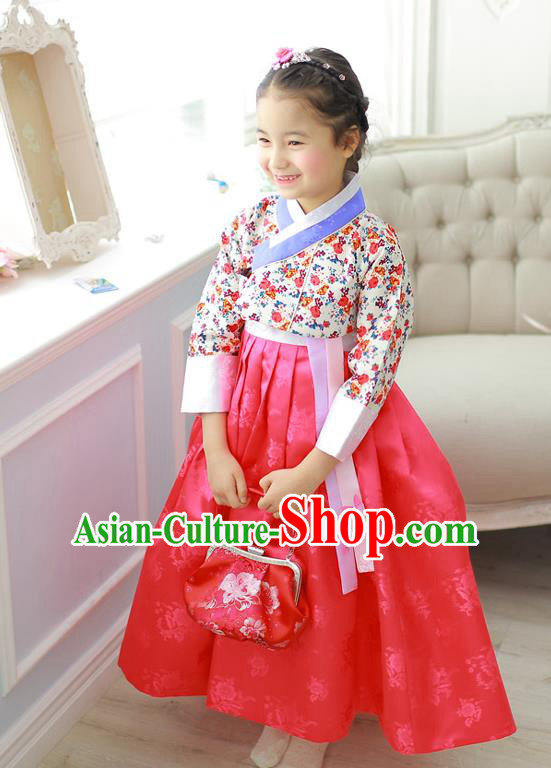 Korean National Handmade Formal Occasions Girls Hanbok Costume Embroidered Blouse and Red Veil Dress for Kids