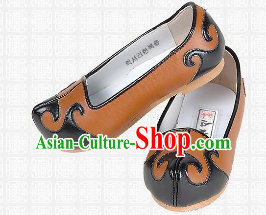 Traditional Korean National Embroidered Shoes, Asian Korean Hanbok Children Brown Shoes for Boys