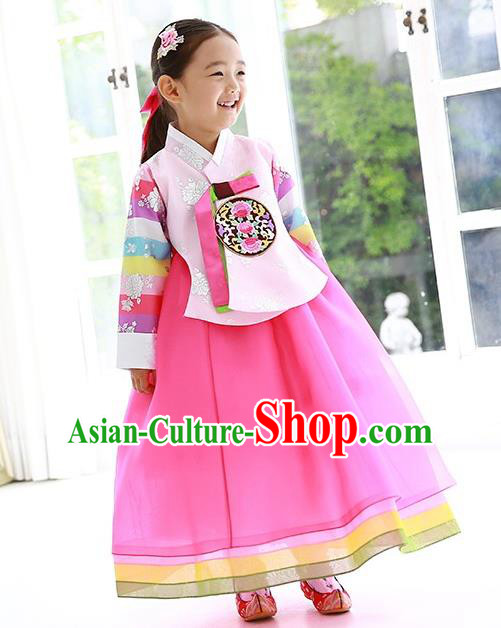 Traditional Korean Handmade Formal Occasions Embroidered Girls Costume Pink Blouse and Dress Hanbok Clothing for Kids