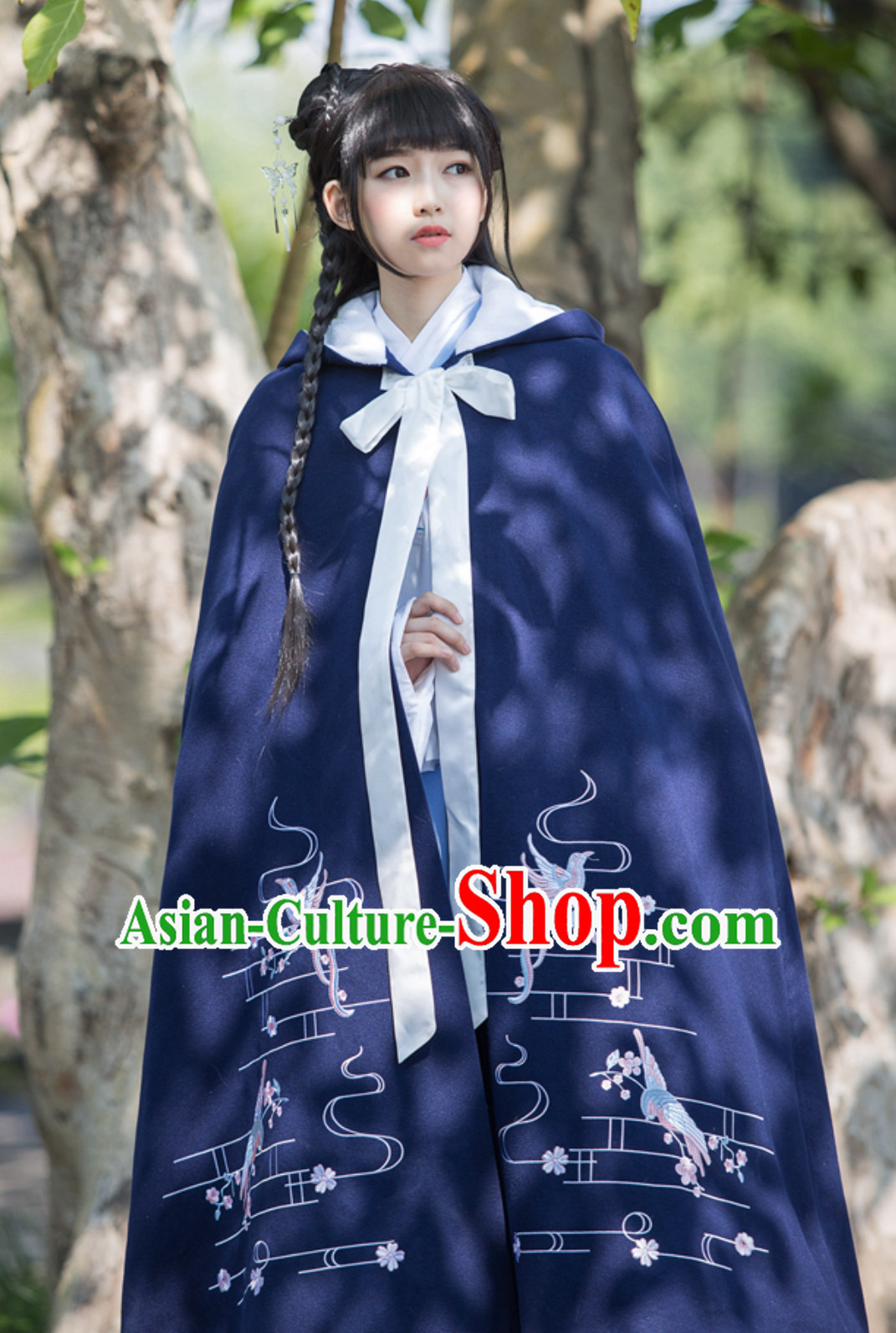 Ancient Chinese Style Embroidered Mantle Cape Hanfu Dress