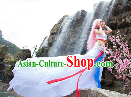Traditional Ancient Chinese Cos Swordsman White Costumes for Women