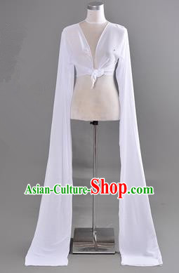 Traditional Chinese Long Sleeve Water Sleeve Dance Suit China Folk Dance Chiffon Long White Ribbon for Women