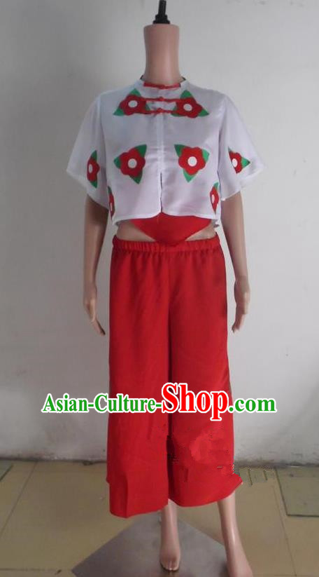 Traditional Chinese Yangge Fan Dancing Costume, Folk Dance Short Sleeve Blouse and Pants Uniforms, Classic Lotus Dance Elegant Dress Drum Dance Clothing for Women