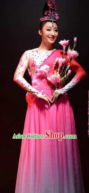 Chinese Classic Stage Performance Chorus Singing Group Dance Costumes, Opening Dance Competition Pink Dress, Classic Dance Clothing for Women