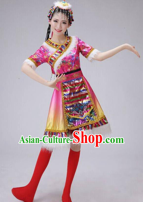 Traditional Chinese Zang Nationality Dancing Costume, Tibetan Female Folk Dance Ethnic Pleated Skirt, Chinese Tibetan Minority Pink Dress for Women