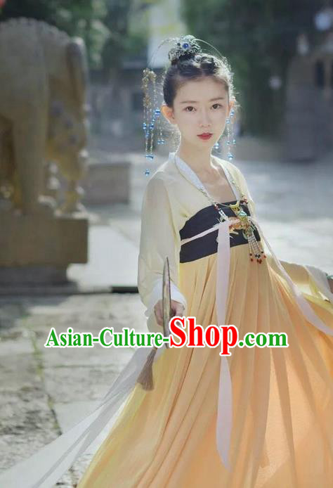 Traditional Chinese Ancient Tang Dynasty Female Costumes, China Hanfu Embroidered Blouse and Ru Skirt Complete Set for Women