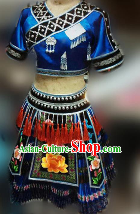 Traditional Chinese Miao Nationality Dance Costume, Hmong Female Folk Dance Ethnic Pleated Skirt, Chinese Minority Nationality Embroidery Costume for Women