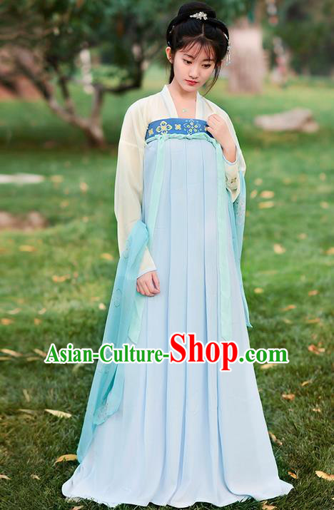 Traditional Ancient Chinese Costume Tang Dynasty Embroidery Blouse and Slip Dress, Elegant Hanfu Clothing Chinese Young Lady Princess Costume for Women
