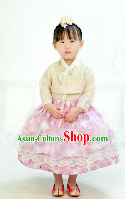 Traditional South Korean Handmade Hanbok Children Little Girls Birthday Customization Embroidery White Blouse and Pink Dress Complete Set, Top Grade Korea Hanbok Costume for Kids