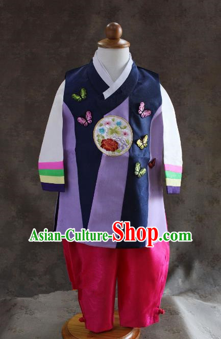 Traditional South Korean Handmade Hanbok Children Baby Birthday Customization Embroidery Butterfly Clothing, Top Grade Korea Hanbok Costume Complete Set for Boys