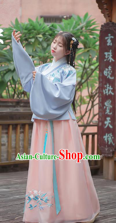 Traditional Chinese Ancient Hanfu Costume Palace Lady Dress, Asian China Ming Dynasty Embroidered Blue Blouse and Skirt Clothing for Women